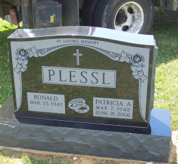 Plessl
